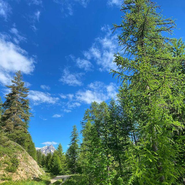 En route vers la saison estivale 🌿😎🌿#evasion #voyage #spa #swimmingpool #allinclusive #summer #summerholiday #chaletluxe #homecinéma #chaletmontagne #luxurytravel #luxurytraveler #skichalet #montagne #chaletprestige #mountainholiday  #beautifuldestinations #luxurychalet #chaletrent #instatravel #instamountain  #serrechevalier #skiresort #familytime #woodchalet #picoftheday #interiordesign