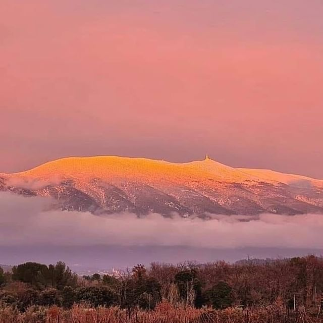 ❄️Le Ventoux sous la neige, c'est toujours un émerveillement... La Provence que nous aimons, un cadeau de la nature.🌱 Qui est allé se promener sur ce blanc manteau ? . . #provence #provencelovers #provencemylove #uchaux #orange #vaucluse #chateaudemassillan #ventoux #snow #winter #luxurylifestyle #authenticplace
