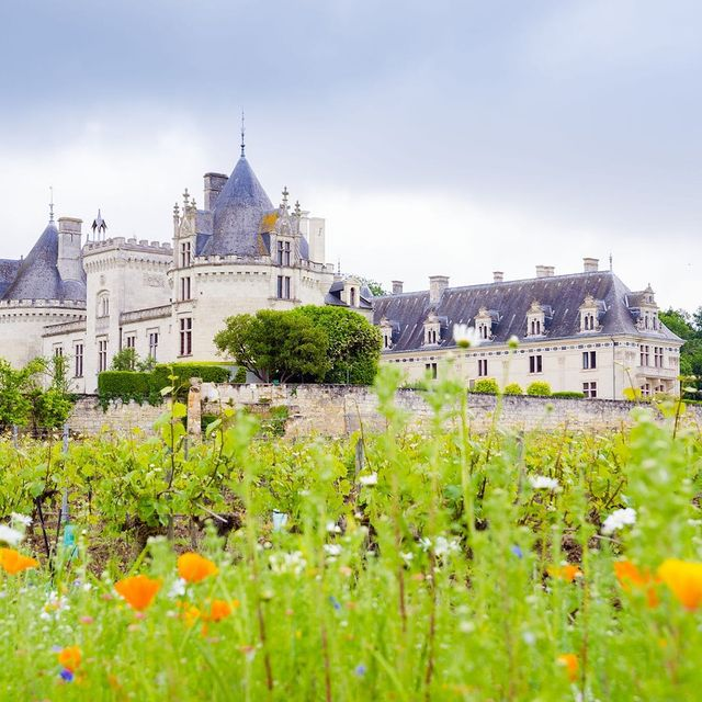 hotels near saumur france