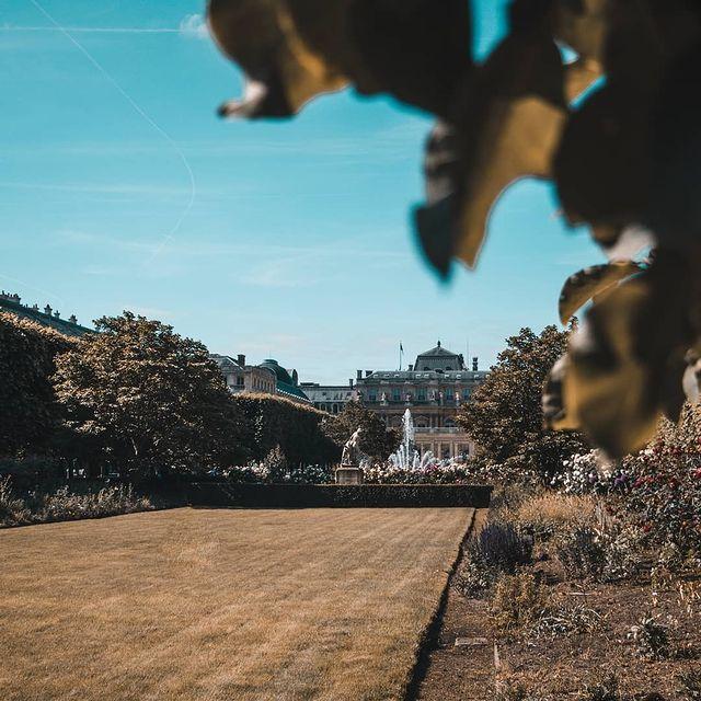 📷 : @itsfannyprevost Jardins du Palais Royal 🌿