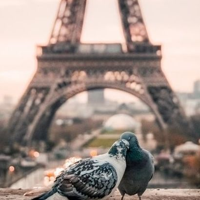 Love & Eiffel Tower in the city of love🕊️❤️