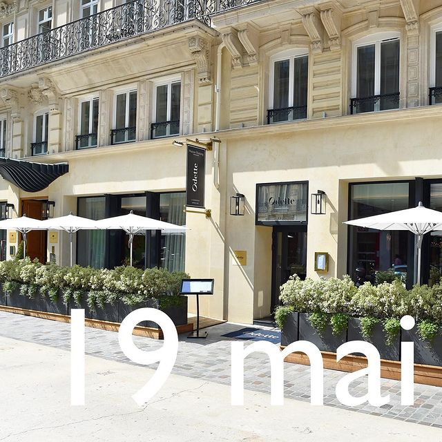 Retrouvons-nous sur la terrasse d' @restaurantodette, l'Auberge Urbaine à partir du 19 mai. Nous sommes si impatients de vous retrouver !  Get back to the @restaurantodette, l'Auberge Urbaine terrace from the 19th of May. We are so exciting to see you back! - #paris #paristourisme #tourismeparis #parishotel #parisianlife #parisianvibes #parisianlifestyle #fashion #france #francetourisme #tourismefrance #tourisme #france4dreams #weekend #hôtel #hotel #hoteldeville #hotellife #hoteldesign #hotelsoftheworld #5star #5starhotel #boutiquehotel #bar #restaurant #gastronomie #gastronomiefrançaise  #hotelspreference  @maisonalbarhotels @hotelspreference @iledefrance @rostang_pere_filles