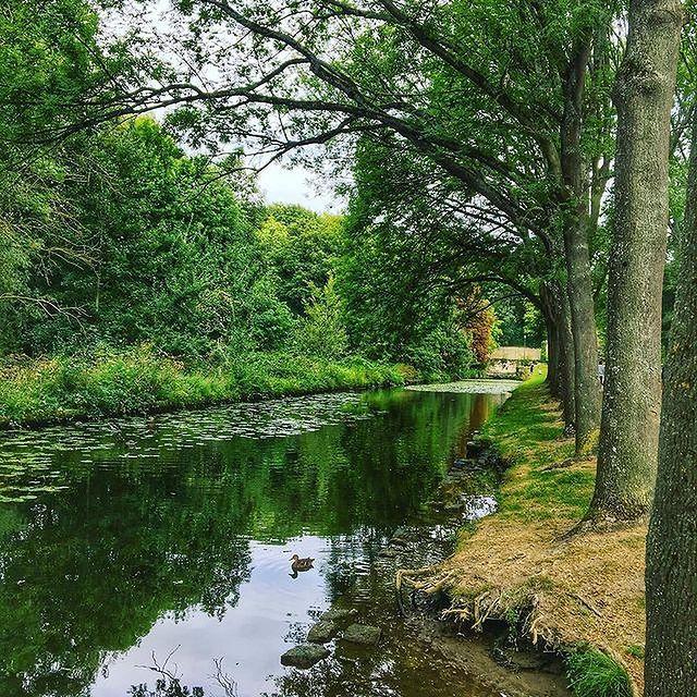 En février, puisez l'inspiration dans la nature. Sur cette photo, les canaux de Chantilly •  Draw inspiration from nature in February. This photo shows the canals in Chantilly. 📷@chantillysenlistourisme #Chantilly #ExploreFrance #Nature #OiseTourisme #TravelPhotography #Discover #Hiking #FamilyMoments