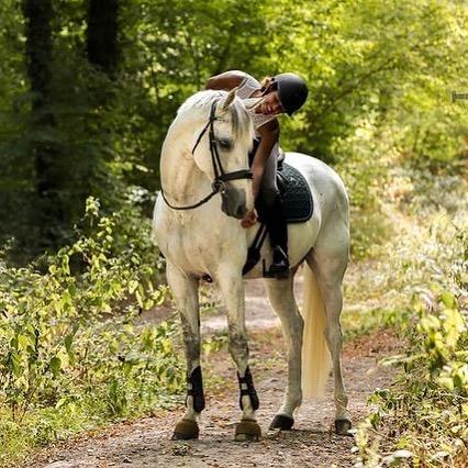 Arpenter les sentiers verdoyants de la Forêt de Chantilly à l'occasion d'une balade à cheval organisée par nos soins...   La promesse d'instants uniques !   ——  Stroll along the green paths of the Chantilly Forest during a horse ride organised by us...   The promise of unique moments!   #MontRoyalChantilly #SmallLuxuryHotels #TiaraHotels #Chantilly #EspritHautsDeFrance #HautsDeFranceTourisme #IgersFrance #NordFrance #HDF #BeautifulDestinations #SecretEscapes #TakeMeThere #LuxuryHotel #NatureLovers #DreamEscape