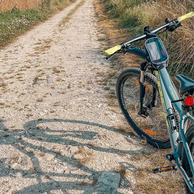 Saisissez-vous d'un des vélos mis à votre disposition et partez à la découverte des paysages variés et préservés qui composent la Forêt de Chantilly et sa région.   ——  Take one of the bikes provided for guests and go and explore the unspoiled and varied countryside of the Forest of Chantilly and surrounding region.   #MontRoyalChantilly #TiaraHotels #Chantilly #SmallLuxuryHotels #VisitChantilly #VisiteLaFrance #francetourisme #biking #velo #slowlife #happymoment #baladeavelo #ensemblecestmieux #lovebiking #balade #bellejournee #danslanature