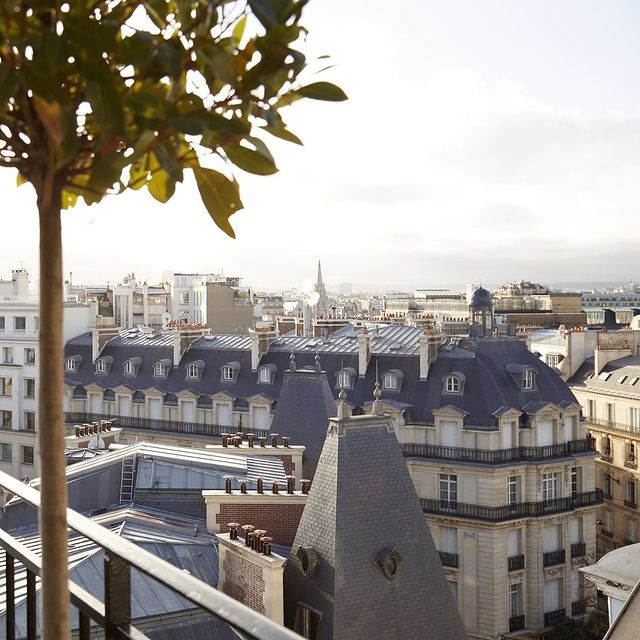 Whether it's your 1st or 5th time in the French capital, it doesn't get more special than a view over Paris from your private terrace.   #sanregis #sanregisparis #boutiquehotel #paris #bestplacestogo #francetravel #visitparis #fivestarhotel #roomwithaview #eiffeltowerview #aplacetoremember #thecoolhunter #cntraveler #places_wow #neversdtopexploring #besthotelintheworld #besthotelparis #parisrooftop #paris_vacations #ParisMonAmour  @parismonamour @paris_maville @smallluxuryhotels @travelandleisure Photo: @heidijeanfeldman