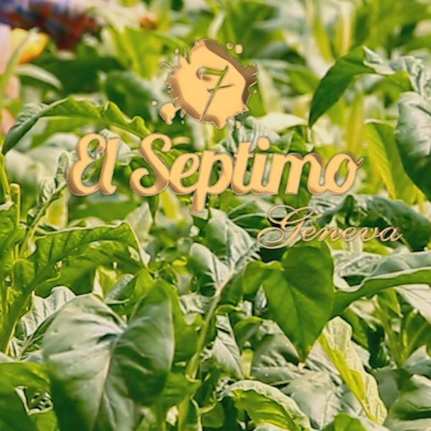 Some of you may not have heard of the El Septimo brand before, but we've been huge in Europe & the Middle East and are just getting started in the U.S. Welcome to the world's first premium cigar line, available worldwide.